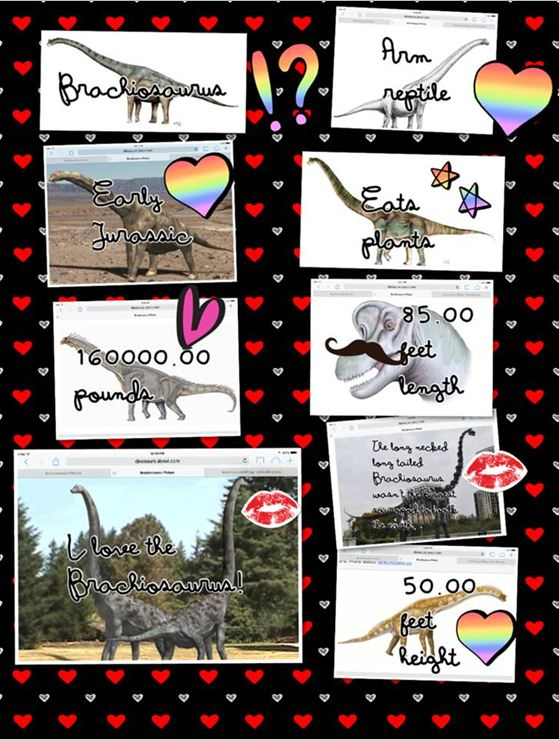 piccollage mlink 1